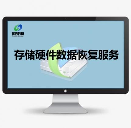 存储硬件数据恢复服务